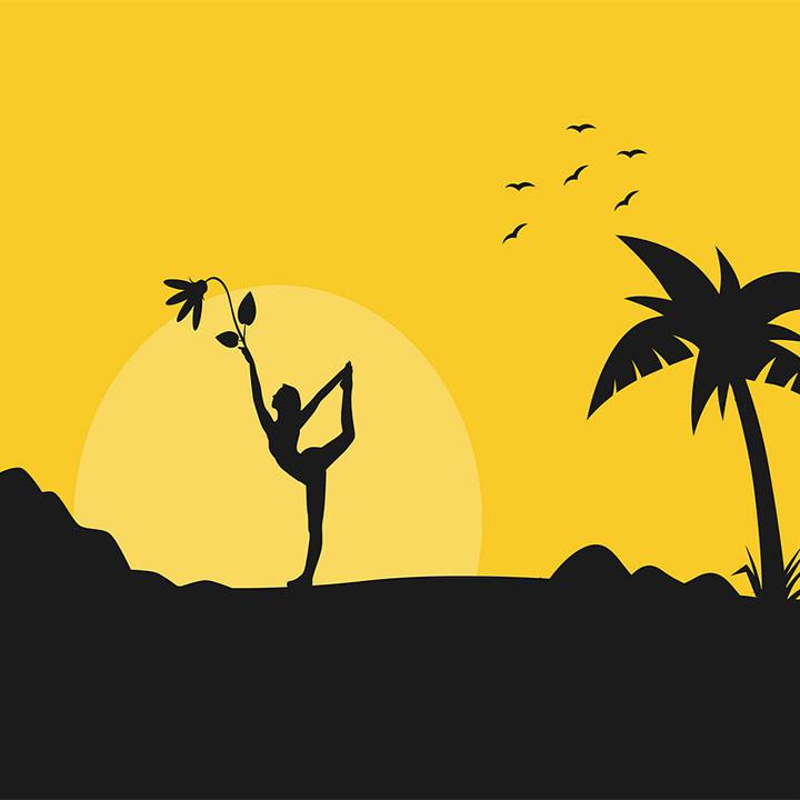 Soul Searchers Yoga Wellness